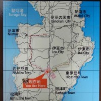 伊豆半島の天城山を縦走