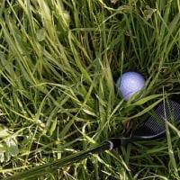 ゴルフ練習 120yから・・・
