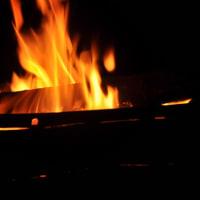 焚き火4(ヨシ)