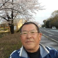 桜とフグと入園式