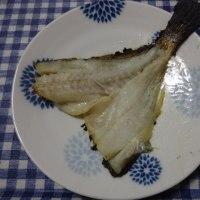 今晩の肴(イシモチ編)