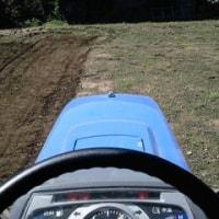 今日は畑の草退治。