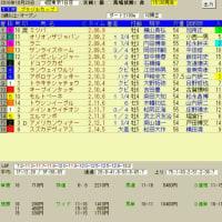 富士ステークス、ブラジルカップ、菊花賞 レース結果と予想の検証