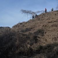 檜原村ふるさとの森-1月①