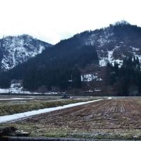 魚津の山奥、片貝川を遡り雪が残る黒谷周辺を探る(2)・・・魚津市・黒谷~山女(あけび)・東蔵(とうぞう)