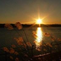 都立狭山公園2016年の師走・・夕刻の多摩湖畔