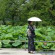 -2694- 上野不忍池と弁天堂
