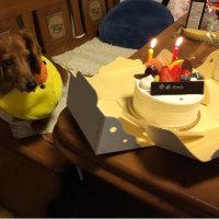 ゆめちゃんの誕生日