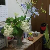 恒例!昨日の晩御飯(2017年6月22日編)