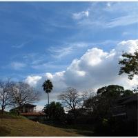 今日の空は夏模様?