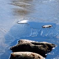 薄氷のある朝(Ⅱ)
