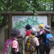 らくらく山歩会   '17 7月例会は山梨県へ  西沢渓谷と大菩薩嶺を歩こう