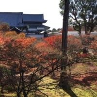 紅い御人& 京都へ
