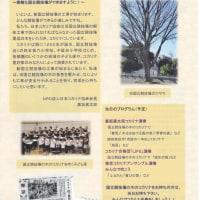 新国立競技場工事安全祈願コンサート    11月27日(日)