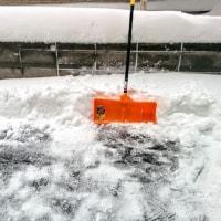 [小樽観光タクシー・ジャンボタクシー]北海道小樽観光タクシー高橋の[小樽観光タクシーの小樽自宅雪かき44㎝]