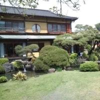 熱海(糸川遊歩道「熱海サクラ」、起雲閣、梅園)
