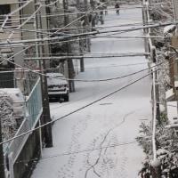 雪化粧~♪