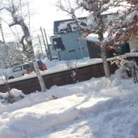 自宅ドックラン9 除雪車⛄