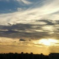 大気不安定で急な空模様の変化に驚かされてます。が、夕景の空の雲模様に癒されてマス。