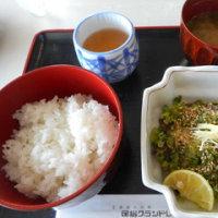 ☆高知 食