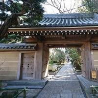 鎌倉へ・・・