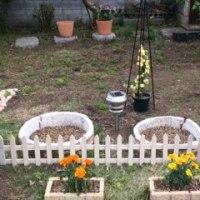 お庭作り再開しました