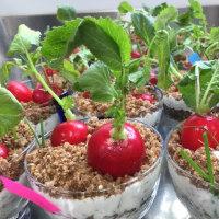 植木鉢の正体