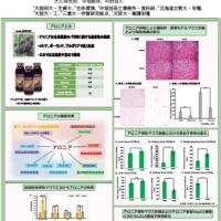 日本栄養・食糧学会において研究発表