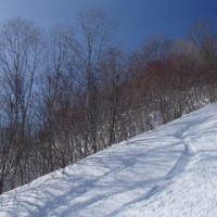 雪崩による事故