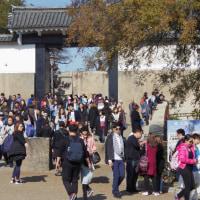 紅葉を見たくて大阪城公園へ 4 (2016.11.26)