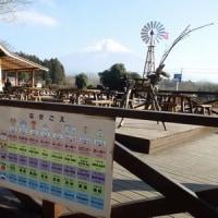 まかいの牧場と田貫湖