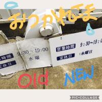 NEW IN(゚∀゚)