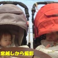 深い眠り♪赤ちゃん♪母親は、お喋り最高潮‥(^з^)Chu!