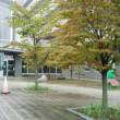 上田医療センターで草取りボランティア