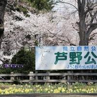 津軽平野の歌碑を見てきました