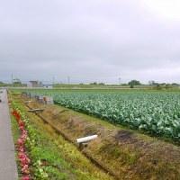 津軽への旅 その2