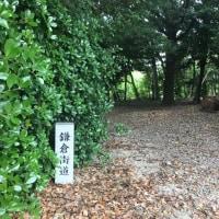 鎌倉街道(祖母神社)