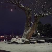 ★僅かな月明り・雪明り・街灯の下で ★大日如来