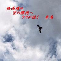 梅雨晴の雲の隙間へ鳬が飛ぶ