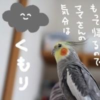 世界気象の日(3月23日)