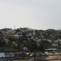 村上義清終焉の地、「根知城」に再チャレンジ