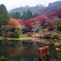 番外編 2016奈良の秋【遠いけどやっぱ宇陀はイイ】