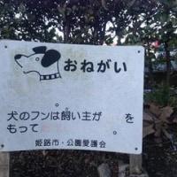 ひょっとして、フンという名前の犬かな?