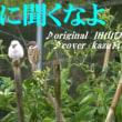 ♪・おすすめ演歌紹介!  【新曲】 ♪・俺に聞くなよ/田山ひろし//