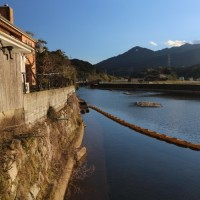 ある日の那珂川