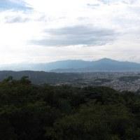 久しぶりに湘南平へ 景色は霞んでましたが・・
