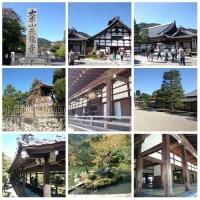 京都の旅2日目はツアーバスで移動して嵐山渡月橋から散策を開始!