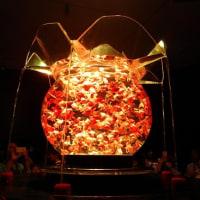 金魚と光と音の和のコラボレーション