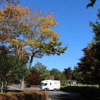 秋晴れの日は充電に励みます