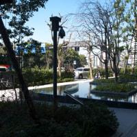 開業後の大手町ホトリア:敷地内の緑地帯や広場の散策 PART3